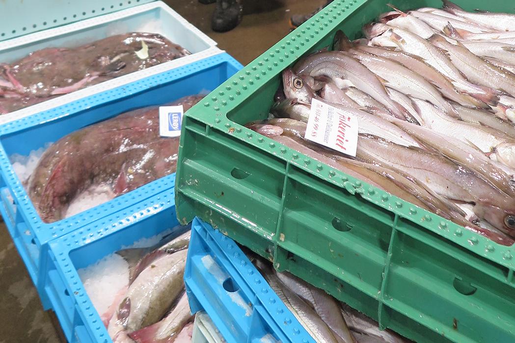 Göteborgs Fiskauktion